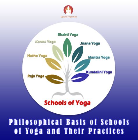47 Best 200 Hours Hatha Yoga Teacher Training Course In Rishikesh Images Hatha Yoga Teacher Training Yoga Teacher Training Course Yoga Teacher Training