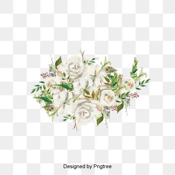 Beautiful Hand Painted Cartoon White Roses Decorative Elements Roses Clipart Aesthetic Cartoon Png Transparent Clipart Image And Psd File For Free Download Flower Illustration Cartoon Clip Art White Rose Flower