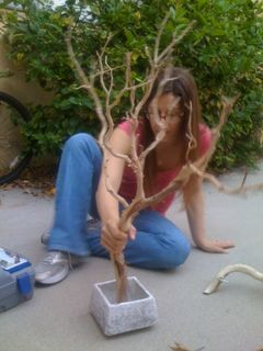 Make a jewelry tree, I think a Laurel branch would look lovely stained dark.  I would use a wood base filled with river rocks on top of the plaster.