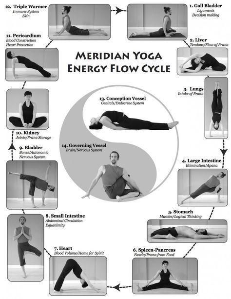 Meridian Yoga Boston Area Energy Yoga Yoga Postures Meridian In 2020 Energy Yoga Yoga Therapy Yoga Postures