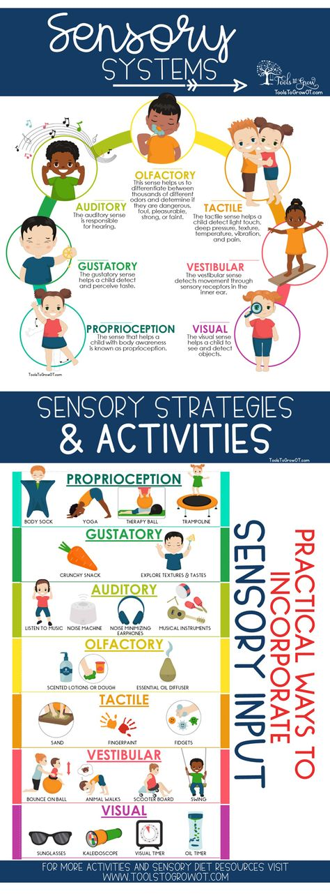 Sensory Diet | Sensory Processing | Therapy Resources | Tools To Grow, Inc.
