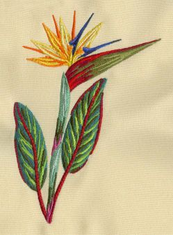 Set With Embroidery Designs Of Tropical Flowers Embroidery Designs Embroidery Craft Machine Embroidery Designs