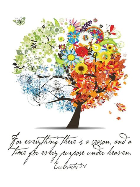 View top-quality illustrations of Four Seasons Spring Summer Autumn Winter Art Tree Beautiful. Find premium, high-resolution illustrative art at Getty Images. Scripture Verses, Bible Scriptures, Bible Quotes, Scripture Pictures, Bible Quotations, Scripture Painting, Ecclesiastes 3, Winter Art, Winter Trees