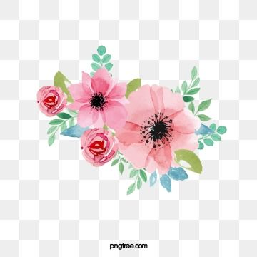 2020 的 Flowers Clipart Hand Painted Png Transparent Image And