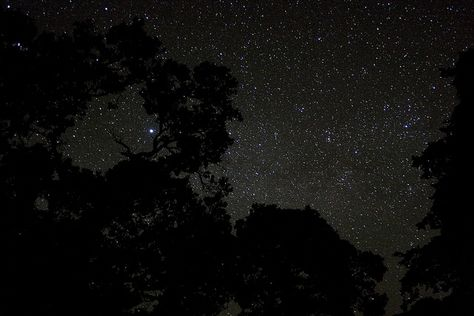 Being in a remote cottage is the perfect time to look upwards and take a look at the beautiful sky with your loved one.