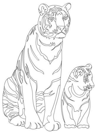 Tiger Ausmalbilder Coloring Pages Super Coloring Pages Color