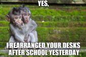 Teacher Humor 17  The Classroom Key - School Funny - School Funny meme - #school #funny #meme -  teacher humor rearranging desks #teacherproblems  The post Teacher Humor 17  The Classroom Key appeared first on Gag Dad.