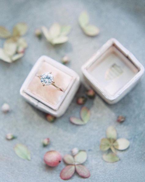 """The Prettiest of Pretties   Photography @lunademarephoto   Ring Box @the_mrs_box   Ring @susiesaltzman"""