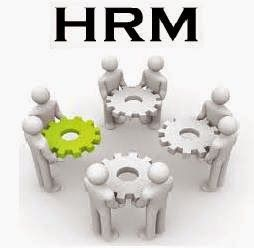 The Human Resource Management System Software Has Become An