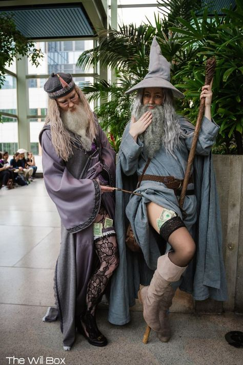 Dumbledore and Gandalf the Grey
