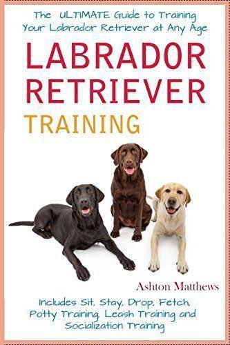Labrador Retriever Training The Ultimate Guide To Training Your