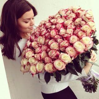 Best Flower Whatsapp Dp Images Hd Download Whatsapp Dp Images Hd Whatsapp Dp Images Whatsapp Dp