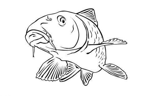 Ausmalbilder Malvorlagen Karpfen Kostenlos Zum Ausdrucken Marchen Aus Aller Welt Der Bruder Grimm Von Andersen Fish Art Fish Logo Ocean Coloring Pages
