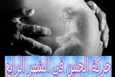 حركة الجنين في الشهر الرابع الذكر والأنثى Fetal Movement Movie Posters Movement