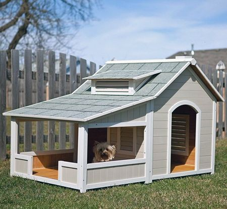 Best Cost Free 3 Practical Tips For Building Your Own Dog House