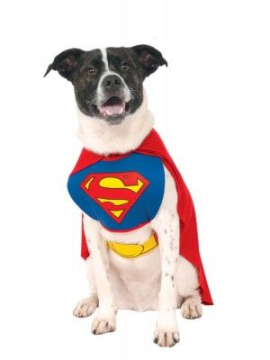 Rubies Classic Without Arms Pet Superman Costume Meduim Arms