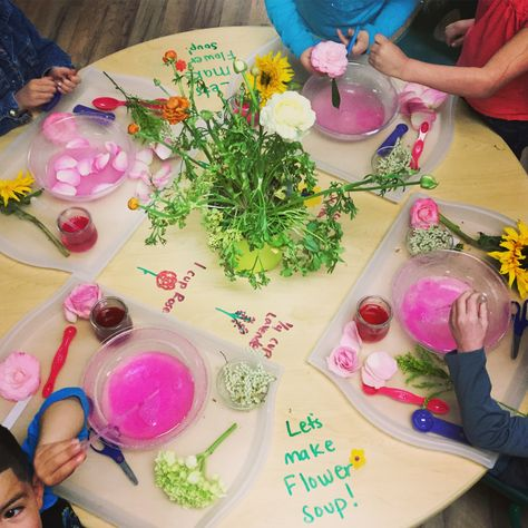 Flower Soup! One of the most popular Water Play activities I have ever seen in a classroom! Such a simple and easy invitation to explore…