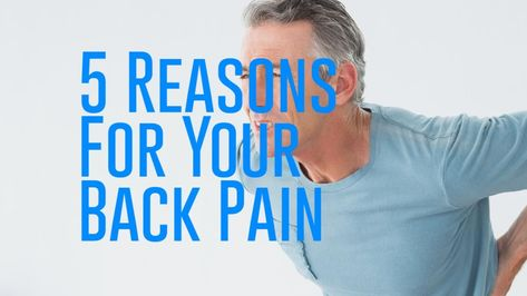 sudden back pain can be caused by a number of things here are 5