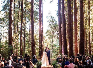 Forest Wedding Venues Redwood Forest Wedding Venues Northern California Forest Wedding Venue Northern California Wedding Venues Redwood Forest Wedding