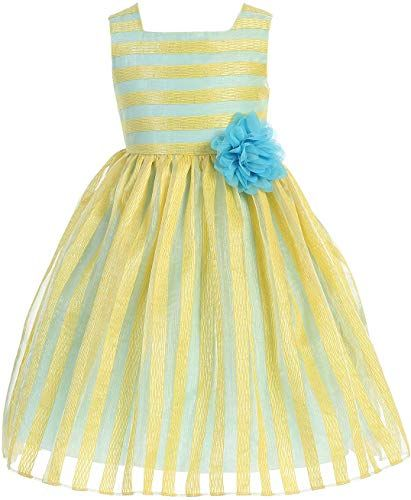 779d2ed47d6 Great for BluNight Collection Little Girl Sleeveless Stripe Contrast Party  Graduation Easter Flower Girl Dress Fashion Girls Clothing.