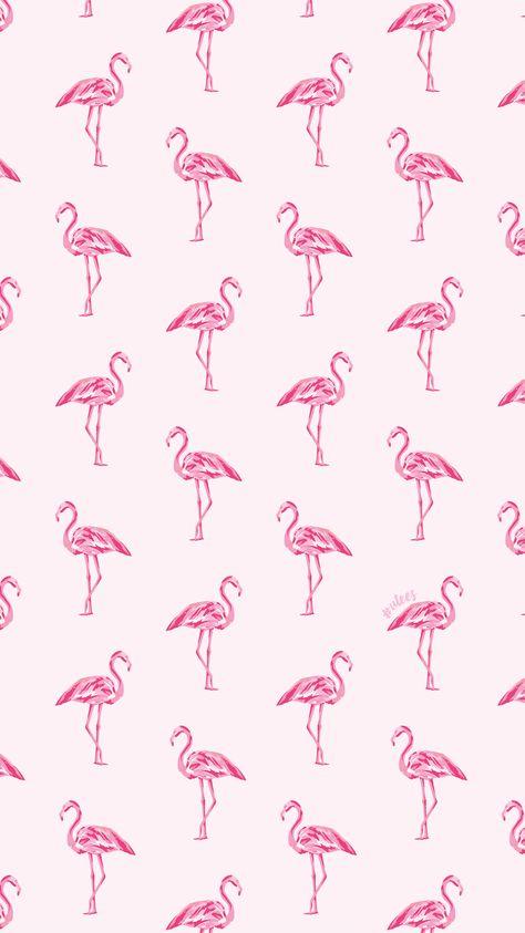 ไอเดีย Flamingos 900+ รายการ ในปี 2021   วอลเปเปอร์, นกฟ ...