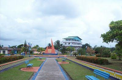 Bacuri Maranhão fonte: i.pinimg.com