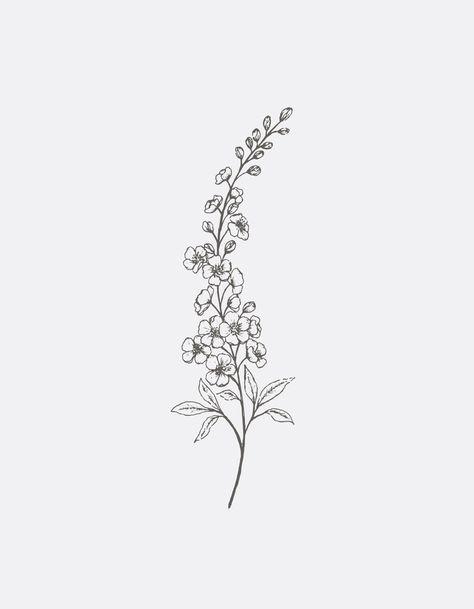 Delphinium Line Art Art Print by Gooseberry Moon - X-Small Larkspur Flower Tattoos, Birth Flower Tattoos, Small Flower Tattoos, Small Tattoos, Flower Outline Tattoo, Medium Tattoos, Flower Tattoo Drawings, Tattoo Flowers, Dream Tattoos