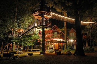 Stunning fairy-tale-like tree houses. Beautiful wooden staircase coils around the tree leading into the house. Wow.