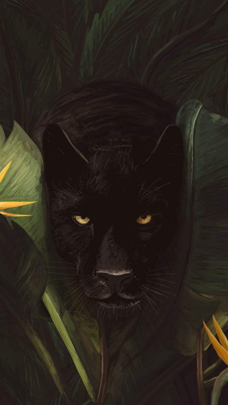 Black Panther In Jungle Iphone Wallpaper Black Panther In Jungle