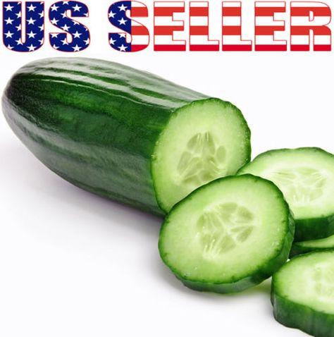 30 Organically Grown Muncher Cucumber Seeds Heirloom Non GMO Crispy Fragrant | eBay