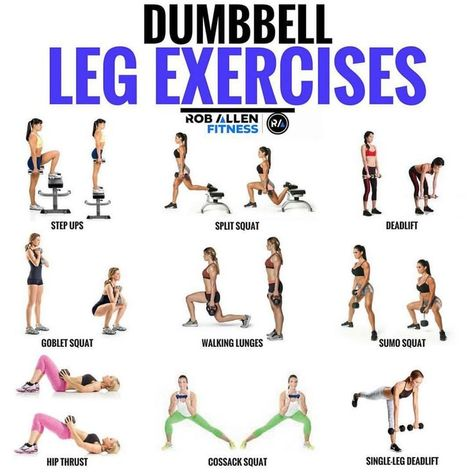 Tone Your Butt: Double The Glute Workout For Double The Results - Dumbbell - Ideas of Dumbbell - Here are some great exercises if youre stuck with only dumbbells. Could be at home at a hotel or even if your gym is SUPER busy and you just want to Leg Workout Women, Leg Workout At Home, At Home Workouts, Ab Workouts, Workout Plans, Workout Ideas, Home Workout With Weights, Leg Workout With Bands, Workout Guide