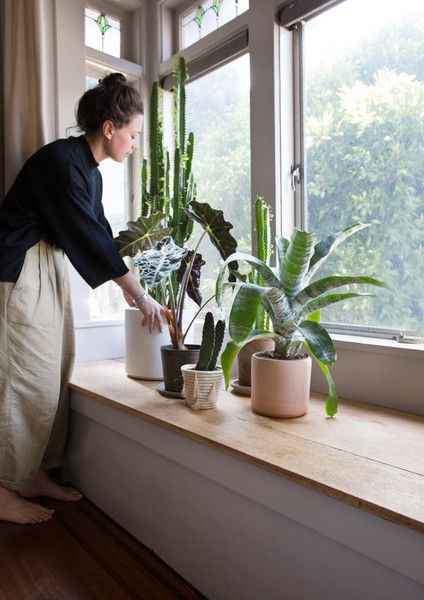 Plant Pals - I Tried To Exist In A Styled Room For A Week — Here's What Happened - Photos
