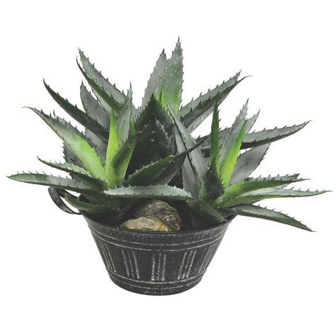 Vickerman 10 Artificial Green Succulent In Galvanized Pot Products In 2019 Potted Trees Cactus Plants Faux Plants