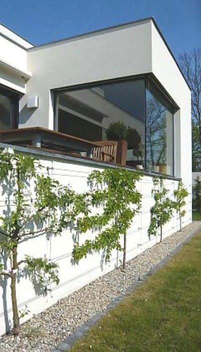 25 best espalier contre façade de maison images on pinterest plant container plants and herb garden planter