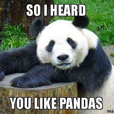 15 Hilarious Panda Memes That Will Make Your Saturday With Images