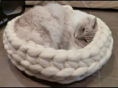 DIY Cat Stuff... How to Arm Crochet a cat bed (chunky crochet)