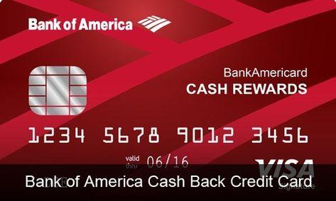 Bank Of America Cash Back Credit Card Review Credit Card Reviews