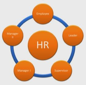 The Perks Of Saas Hr Software For Your Organization Accounting And Finance Human Resource Management System Hr Management