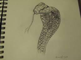"""Dessin Cobra résultat de recherche d'images pour """"dessin cobra""""   serpent   pinterest"""