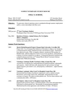 Cv Template Veterinary Student Resume Format Cv Template Student Resume Student