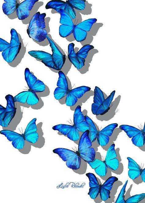 """""""Butterfly Blanket"""" digital artFine Art by Leslie Rhoades AKA MrsHappy [If inter...,  #aka #Art #artFine #Blanket #butterfly #Digital #inter #Leslie #MrsHappy #Rhoades"""