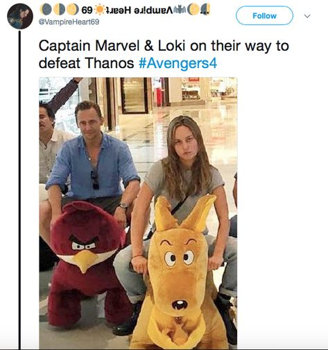 """Captain Marvel & Loki on their way to defeat Thanos Avengers Humor, Funny Marvel Memes, Marvel Jokes, Dc Memes, Captain Marvel, Marvel Avengers, Marvel Comics, Marvel Actors, Ms Marvel"