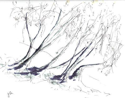 Cali Trees Sketch 3