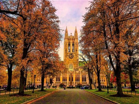 Tell Boston College: Don't take right-wing Koch money Boston University Campus, Hogwarts University, Boston College, Florida State University, College Campus, In Boston, College Life, New York Wallpaper, College Aesthetic