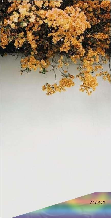 Apr 30 2020 62 Trendy Ideas 90s Aesthetic Wallpaper Vintage Yellow Vintage Wallpaper En 2020 Fond D Ecran Telephone Fond D Ecran Colore Tournesols Papier