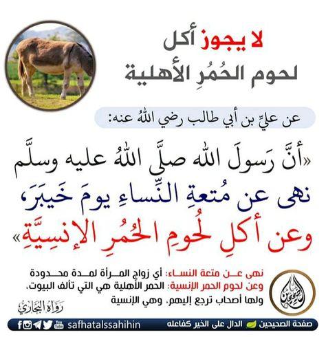 Pin By لينا سالم On اللهم صل على محمد وال محمد Islam Peace Be Upon Him Hadith