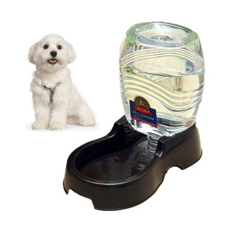 Pets Small Dogs Water Dispenser Dog Cat