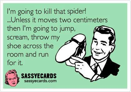 Kill That Spider - #Ecard, #FunnyEcards, #Girls, #Humor, #Women