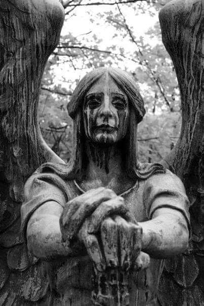 angel and statue image Creepy Art, Scary, Crying Angel, Art Pierre, Gothic Aesthetic, Arte Obscura, Cemetery Art, Dark Photography, Gothic Art
