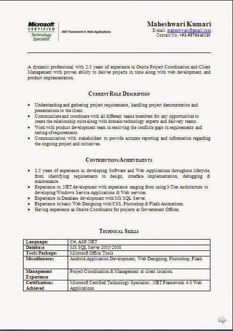 example of a cv for a job Sample Template Example ofExcellent - product development resume sample